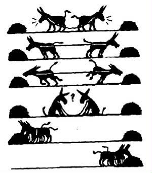 burros unidad