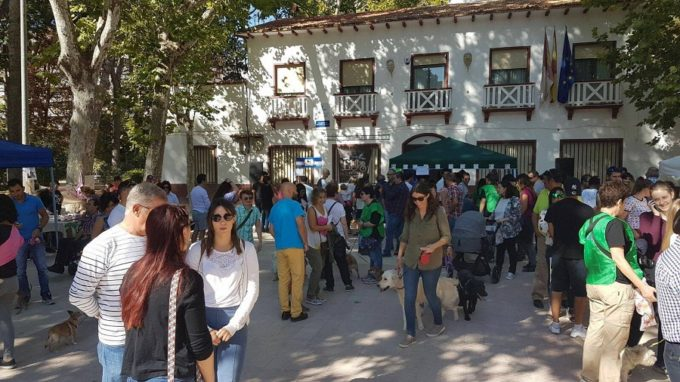 Dejando Huella cifra en más de 2.000 los asistentes a su II Feria de Adopción y Protección de Animal
