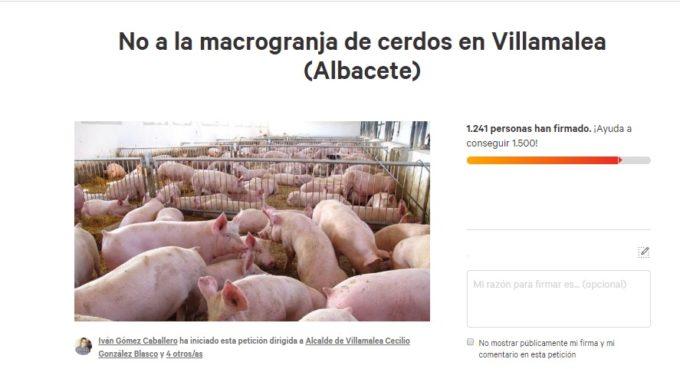 Más de 1.200 firmas contra la macogranja de Villamalea
