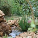 El Jardín Botánico de Albacete entra a formar parte de la 'Alianza por el Cambio Climático de los Jardines Botánicos'