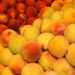 Albacete espera una cosecha de fruta de hueso mayor que en 2019