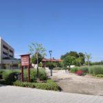 La Concejalía de Sostenibilidad de Albacete inicia la campaña de control de mosquitos en zonas verdes