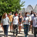 Germina Empleo Manchuela: economía social y solidaria para la agroecología