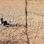 Presencia albaceteña en un estudio internacional que evalúa la restauración de zonas áridas en todo el mundo