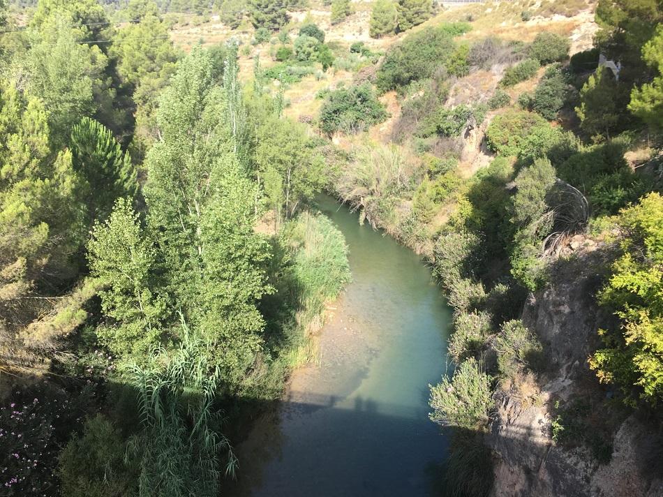 AlbaceteCapital