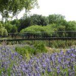 El Jardín Botánico de Castilla-La Mancha acoge este domingo el acto de adhesión de Albacete al Pacto Verde Europeo