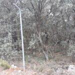 Ecologistas La Manchuela y el Ayuntamiento de Carcelén unidos para quitar el vallado cinegético del monte publico ´La Hunde´